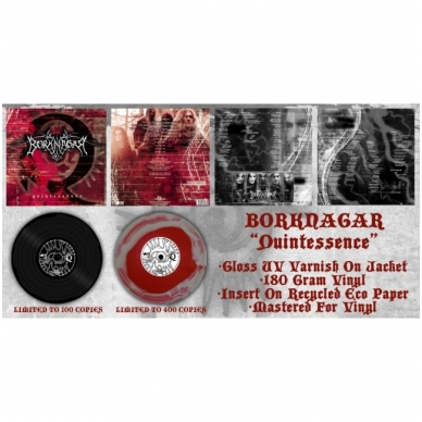 Borknagar - Quintessence LP 2