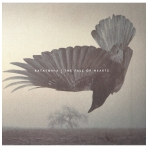 Katatonia - The Fall Of Hearts CD / DVD