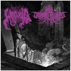 The True Werwolf / Druadan Forest - Split CD