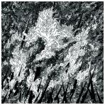 Vilkacis / Turia - Split LP